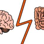 La fame : nutrirsi di pancia, mangiare con la mente